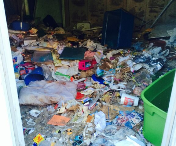 hoarding cleanup tips